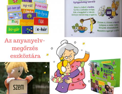 Az anyanyelvmegőrzés eszköztára